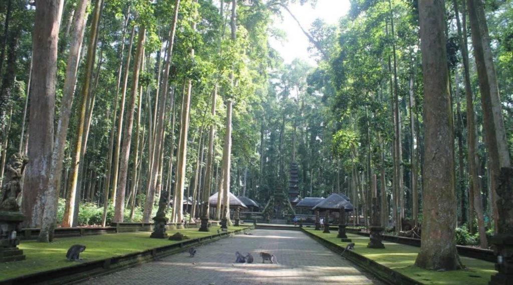 Rừng khỉ Sangeh Monkey Forest